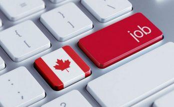 Работа в Канаде: варианты вакансий